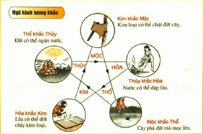 ngu-hanh-tuong-sinh-02