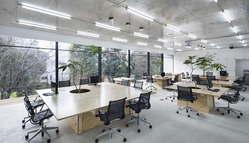 Phong cách văn phòng mở