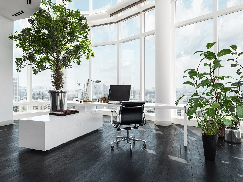 phong cách thiết kế văn phòng eco