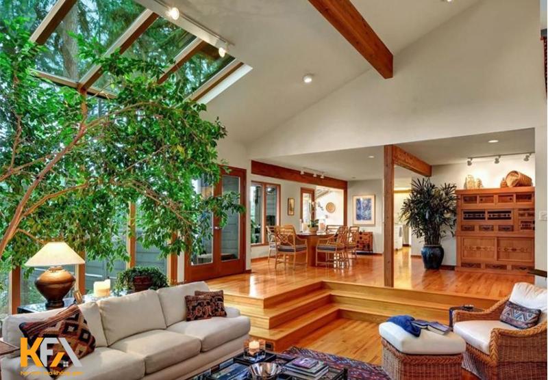 Trồng cây xanh trong phòng khách sẽ là một ý kiến hay
