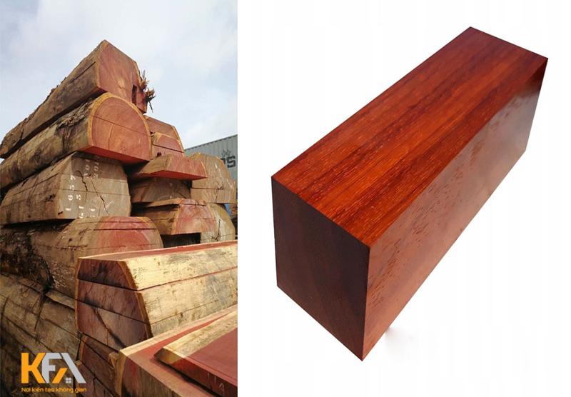 Gỗ hương là gì? Đặc điểm và cách phân biệt gỗ hương trên thị trường